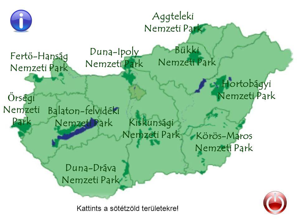 Duna-Ipoly Nemzeti Park Hortobágyi Nemzeti Park Kiskunsági Nemzeti Park Aggteleki Nemzeti Park Duna-Dráva Nemzeti Park Bükki Nemzeti Park Körös-Maros Nemzeti Park Balaton-felvidéki Nemzeti Park Ő rségi Nemzeti Park Fert ő -Hanság Nemzeti Park Kattints a sötétzöld területekre!