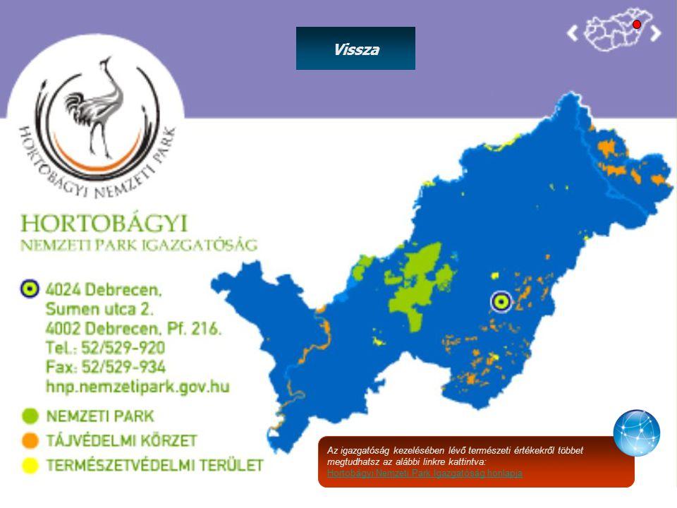Az igazgatóság kezelésében lévő természeti értékekről többet megtudhatsz az alábbi linkre kattintva: Hortobágyi Nemzeti Park Igazgatóság honlapja Vissza