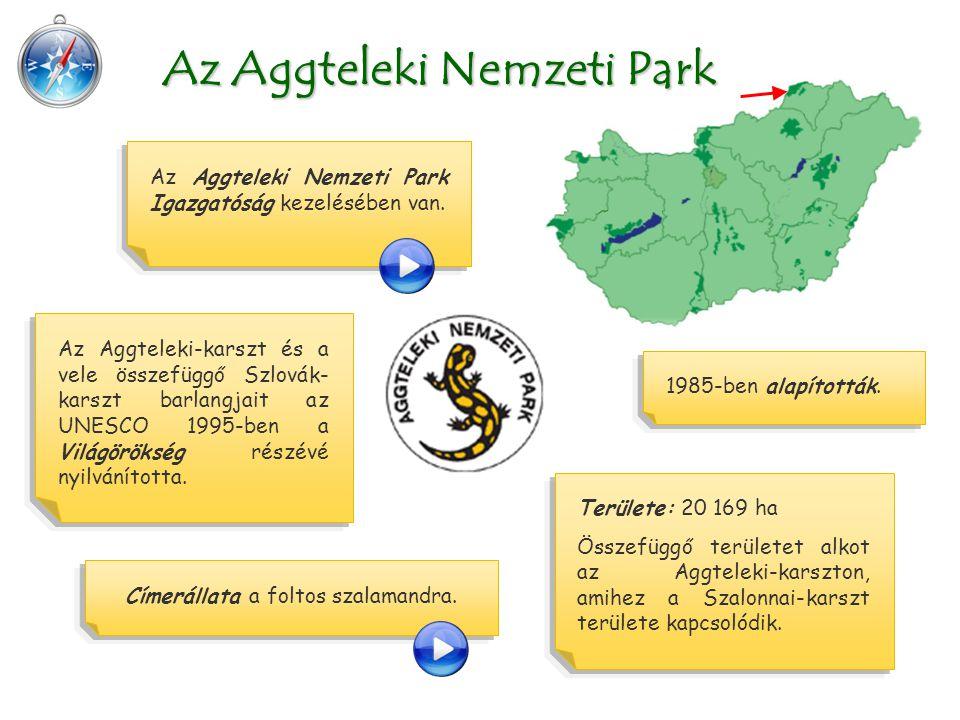 Területe: 20 169 ha Összefüggő területet alkot az Aggteleki-karszton, amihez a Szalonnai-karszt területe kapcsolódik. Az Aggteleki Nemzeti Park Az Agg