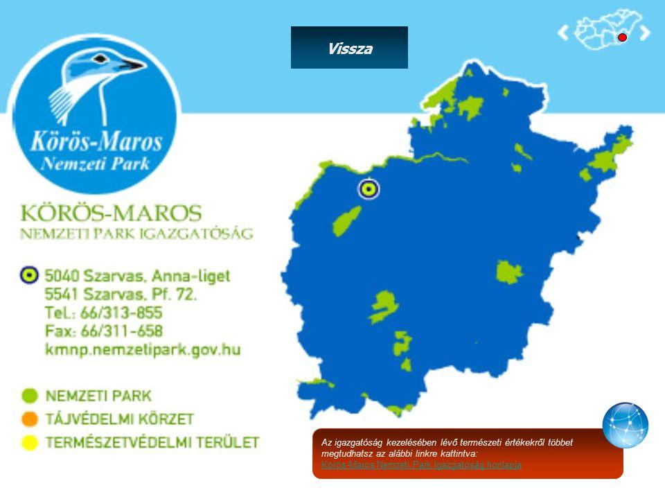 Az igazgatóság kezelésében lévő természeti értékekről többet megtudhatsz az alábbi linkre kattintva: Körös-Maros Nemzeti Park Igazgatóság honlapja Vissza