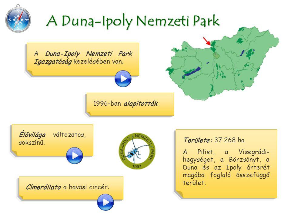 Területe: 37 268 ha A Pilist, a Visegrádi- hegységet, a Börzsönyt, a Duna és az Ipoly árterét magába foglaló összefüggő terület. A Duna-Ipoly Nemzeti
