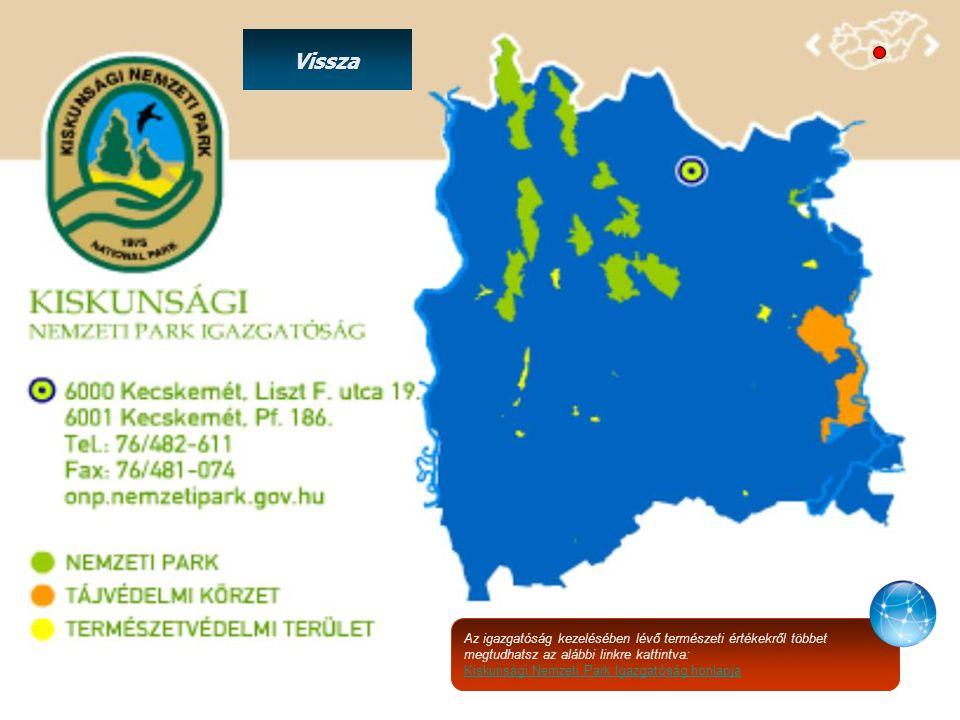 Az igazgatóság kezelésében lévő természeti értékekről többet megtudhatsz az alábbi linkre kattintva: Kiskunsági Nemzeti Park Igazgatóság honlapja Vissza