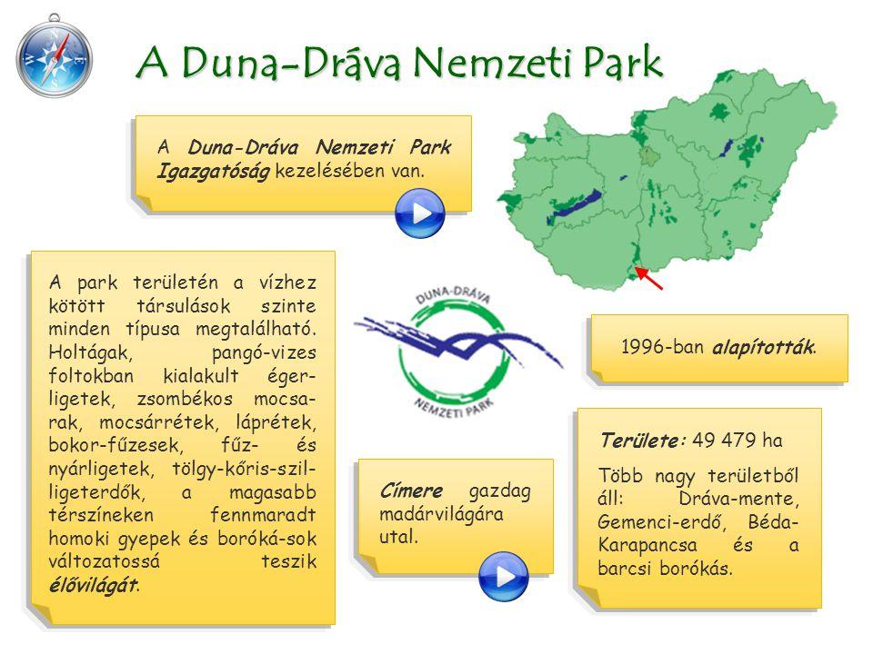 Területe: 49 479 ha Több nagy területből áll: Dráva-mente, Gemenci-erdő, Béda- Karapancsa és a barcsi borókás. A Duna-Dráva Nemzeti Park A Duna-Dráva
