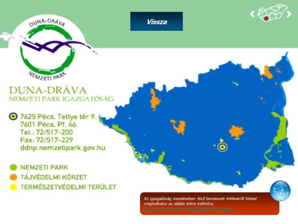 Az igazgatóság kezelésében lévő természeti értékekről többet megtudhatsz az alábbi linkre kattintva: Duna-Dráva Nemzeti Park Igazgatóság honlapja Viss