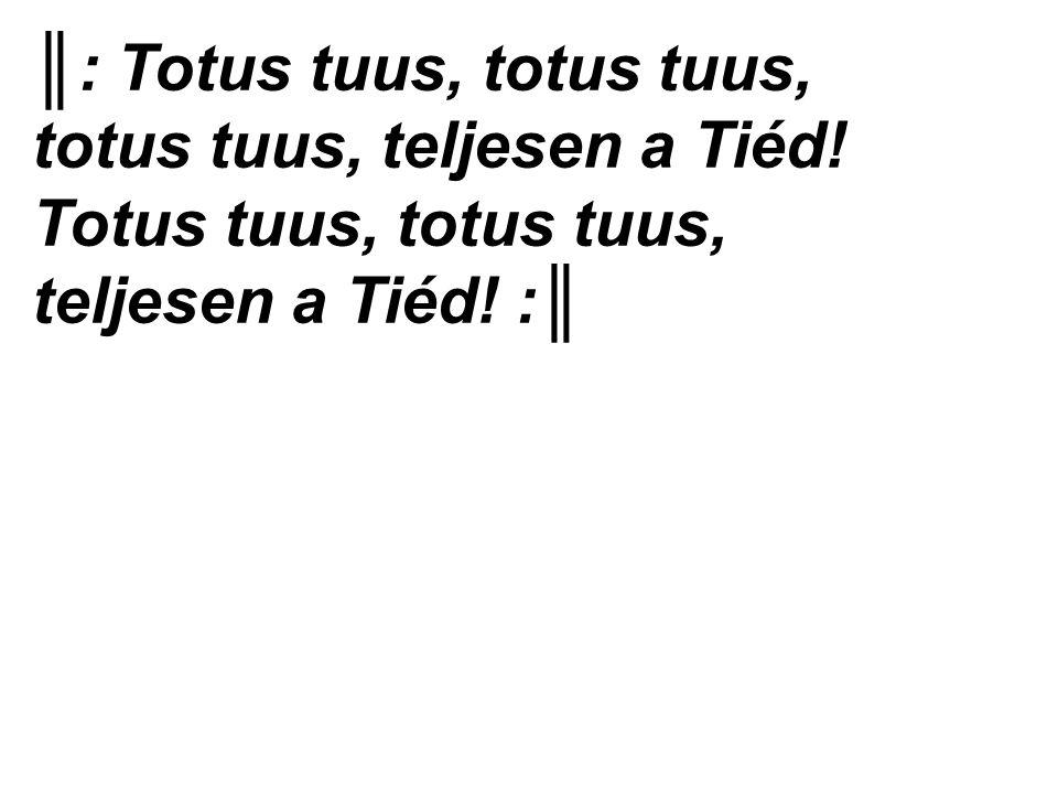 ║: Totus tuus, totus tuus, totus tuus, teljesen a Tiéd! Totus tuus, totus tuus, teljesen a Tiéd! :║