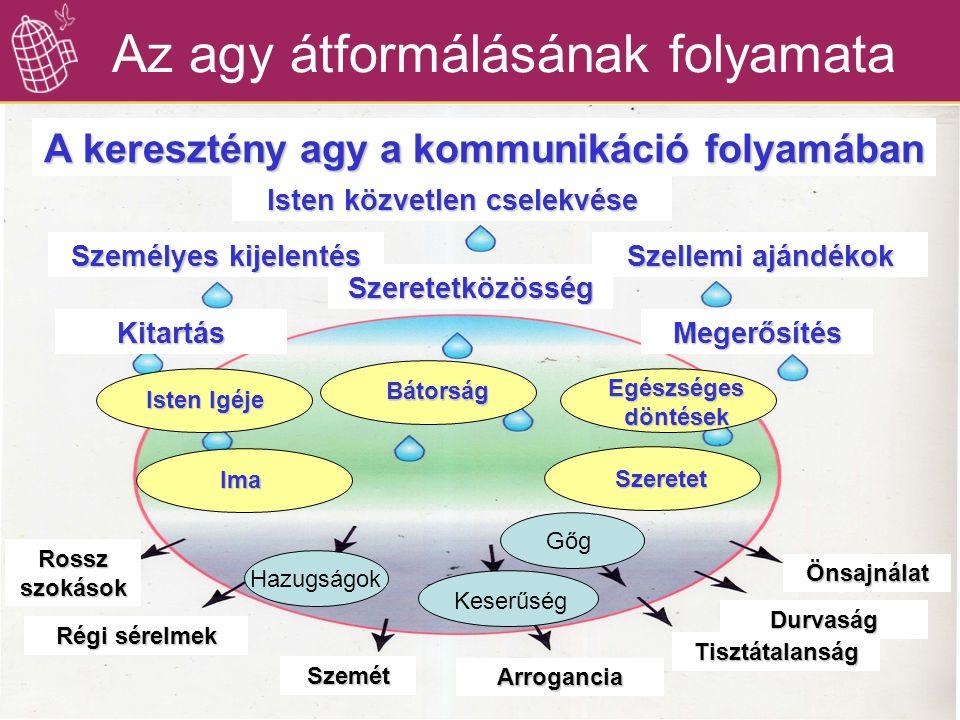 Az agy átformálásának folyamata A keresztény agy a kommunikáció folyamában Isten közvetlen cselekvése Szeretetközösség Személyes kijelentés Szellemi a