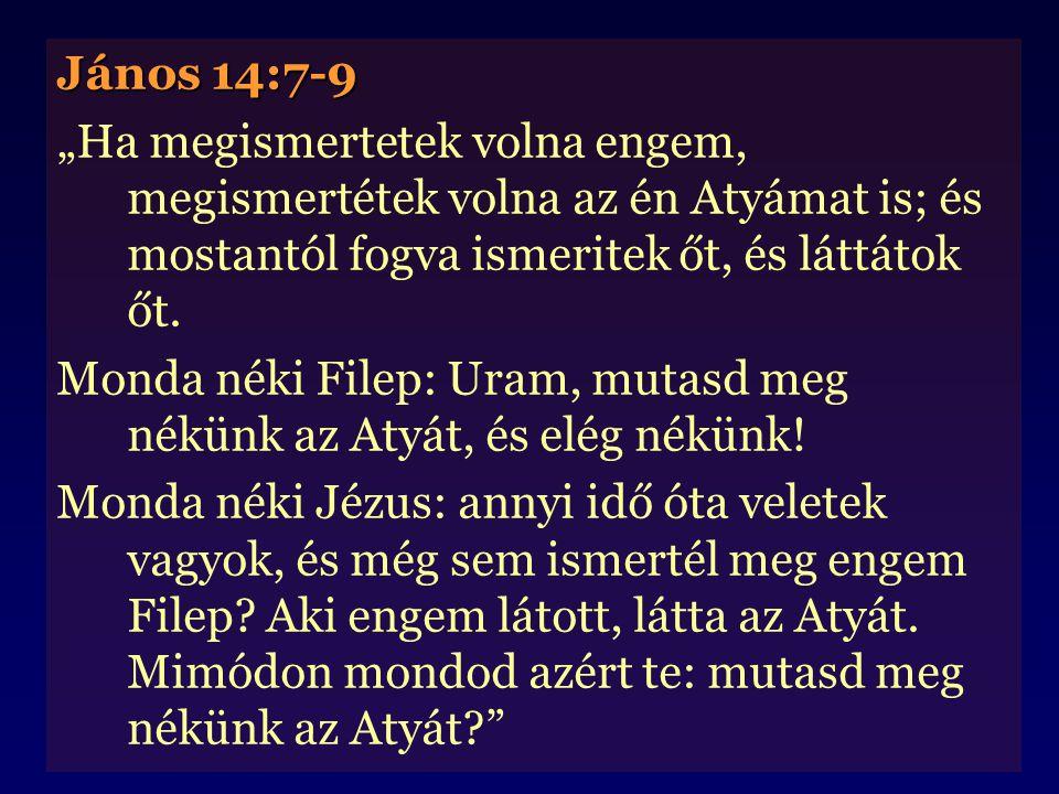 """János 14:7-9 """"Ha megismertetek volna engem, megismertétek volna az én Atyámat is; és mostantól fogva ismeritek őt, és láttátok őt. Monda néki Filep: U"""