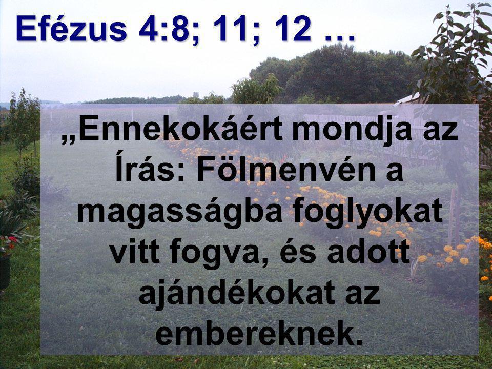 """Tisztelet és dicsőség Efézus 4:8; 11; 12 … """"Ennekokáért mondja az Írás: Fölmenvén a magasságba foglyokat vitt fogva, és adott ajándékokat az embereknek."""