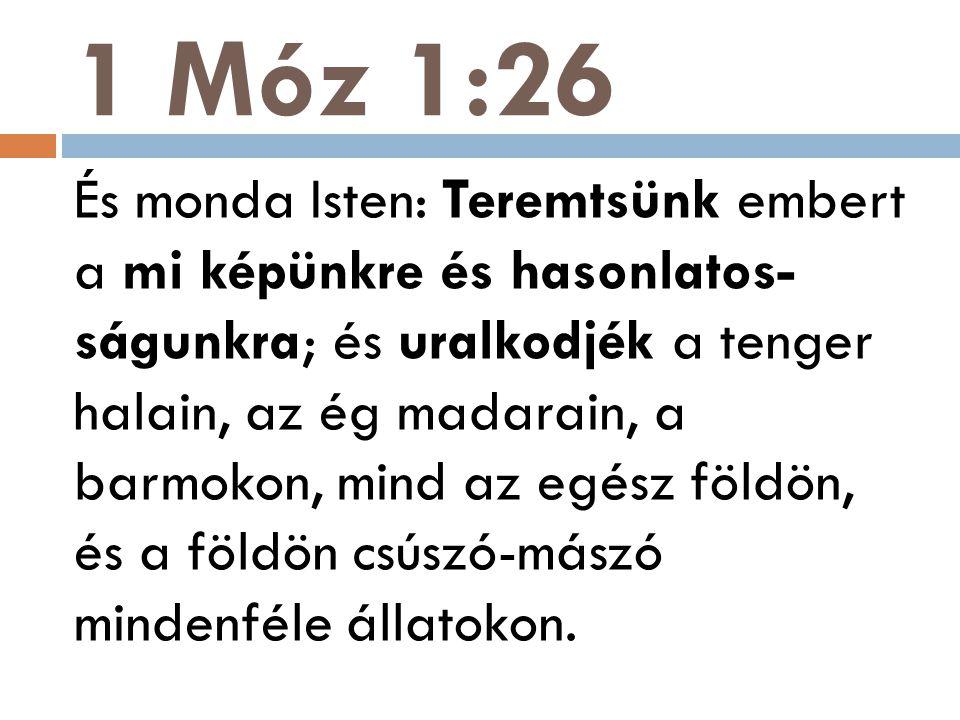 1 Móz 1:26 És monda Isten: Teremtsünk embert a mi képünkre és hasonlatos- ságunkra; és uralkodjék a tenger halain, az ég madarain, a barmokon, mind az