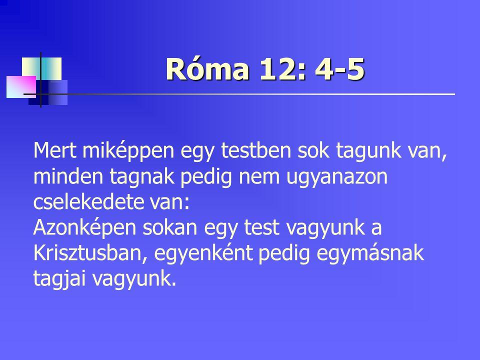 Minthogy azért külön-külön ajándékaink vannak a nékünk adott kegyelem szerint, akár írásmagyarázás, a hitnek szabálya szerint teljesítsük Akár szolgálat, a szolgálatban; akár tanító, a tanításban; Róma 12: 6-7