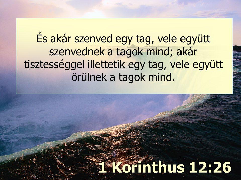 Igazság és szeretet (2) 1 Korinthus 12:26 És akár szenved egy tag, vele együtt szenvednek a tagok mind; akár tisztességgel illettetik egy tag, vele eg