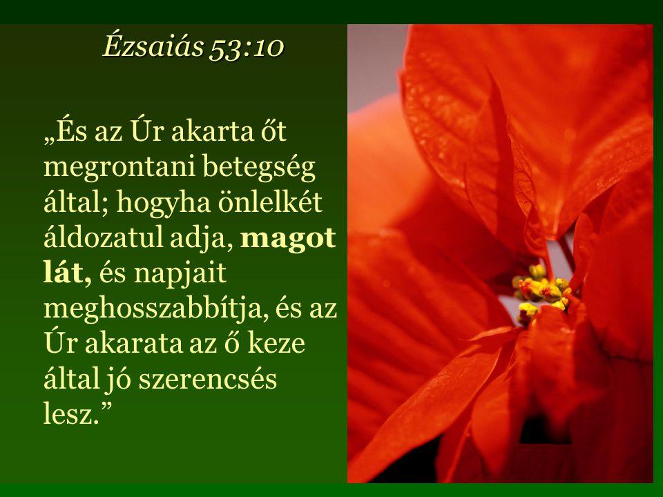 """Ézsaiás 53:10 """"És az Úr akarta őt megrontani betegség által; hogyha önlelkét áldozatul adja, magot lát, és napjait meghosszabbítja, és az Úr akarata az ő keze által jó szerencsés lesz."""