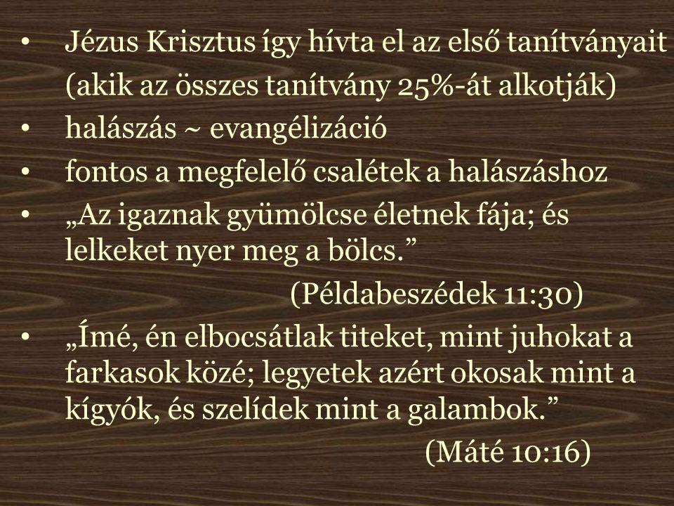 """Jézus Krisztus így hívta el az első tanítványait (akik az összes tanítvány 25%-át alkotják) halászás ~ evangélizáció fontos a megfelelő csalétek a halászáshoz """"Az igaznak gyümölcse életnek fája; és lelkeket nyer meg a bölcs. (Példabeszédek 11:30) """"Ímé, én elbocsátlak titeket, mint juhokat a farkasok közé; legyetek azért okosak mint a kígyók, és szelídek mint a galambok. (Máté 10:16)"""