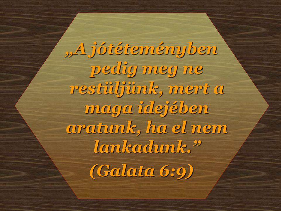 """""""A jótéteményben pedig meg ne restüljünk, mert a maga idejében aratunk, ha el nem lankadunk. (Galata 6:9)"""