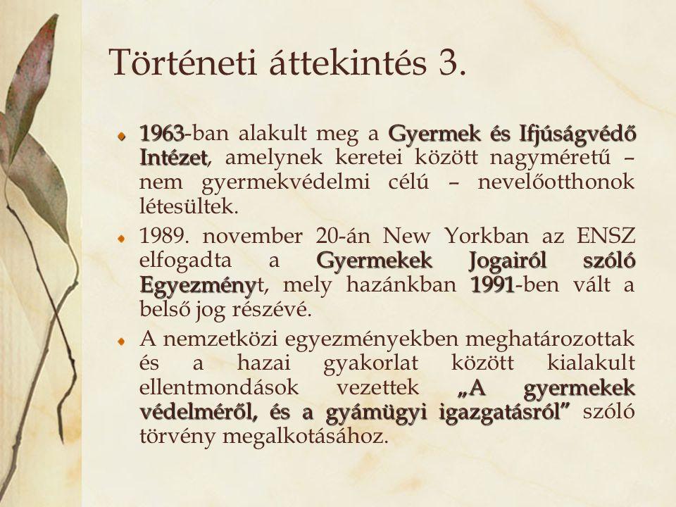 Történeti áttekintés 3. 1963Gyermek és Ifjúságvédő Intézet 1963-ban alakult meg a Gyermek és Ifjúságvédő Intézet, amelynek keretei között nagyméretű –