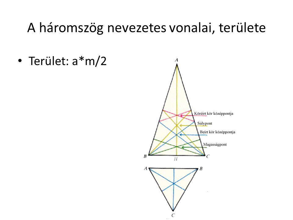 A háromszög nevezetes vonalai, területe Terület: a*m/2