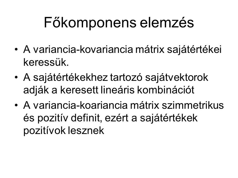 Főkomponens elemzés A variancia-kovariancia mátrix sajátértékei keressük. A sajátértékekhez tartozó sajátvektorok adják a keresett lineáris kombináció