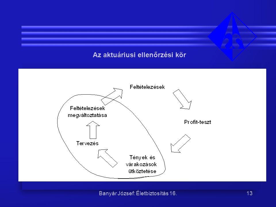 Banyár József: Életbiztosítás 16.13 Az aktuáriusi ellenőrzési kör