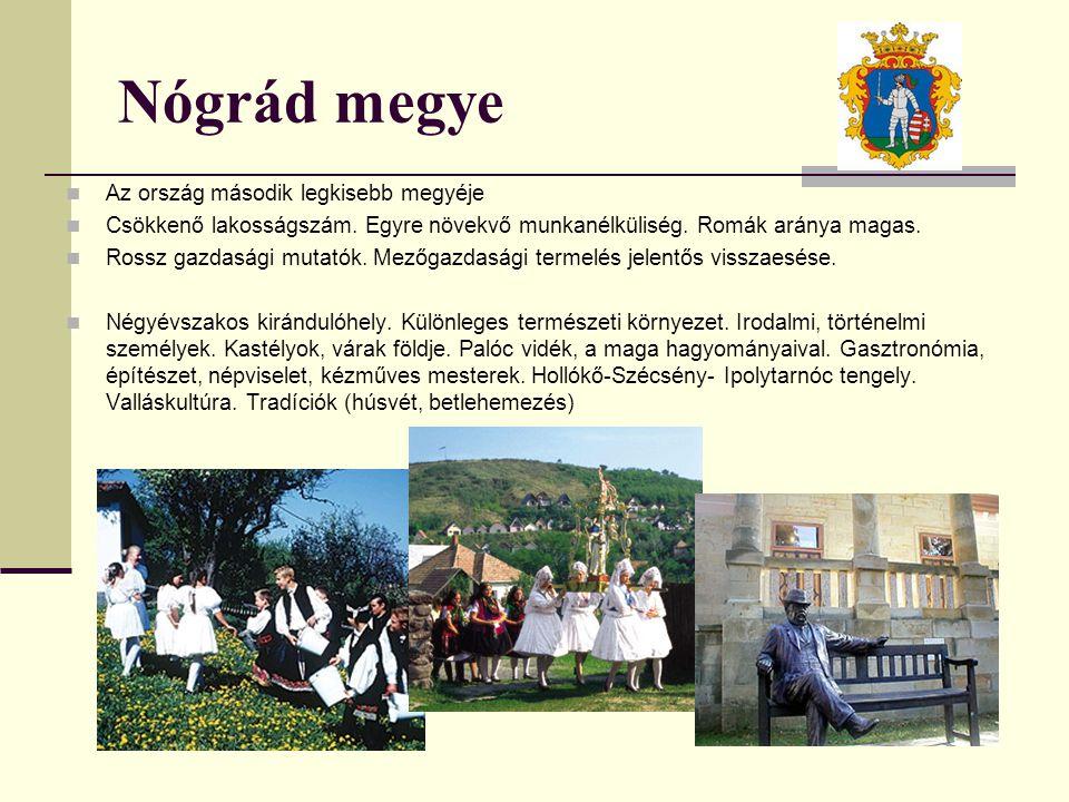 Nógrád megye Az ország második legkisebb megyéje Csökkenő lakosságszám. Egyre növekvő munkanélküliség. Romák aránya magas. Rossz gazdasági mutatók. Me