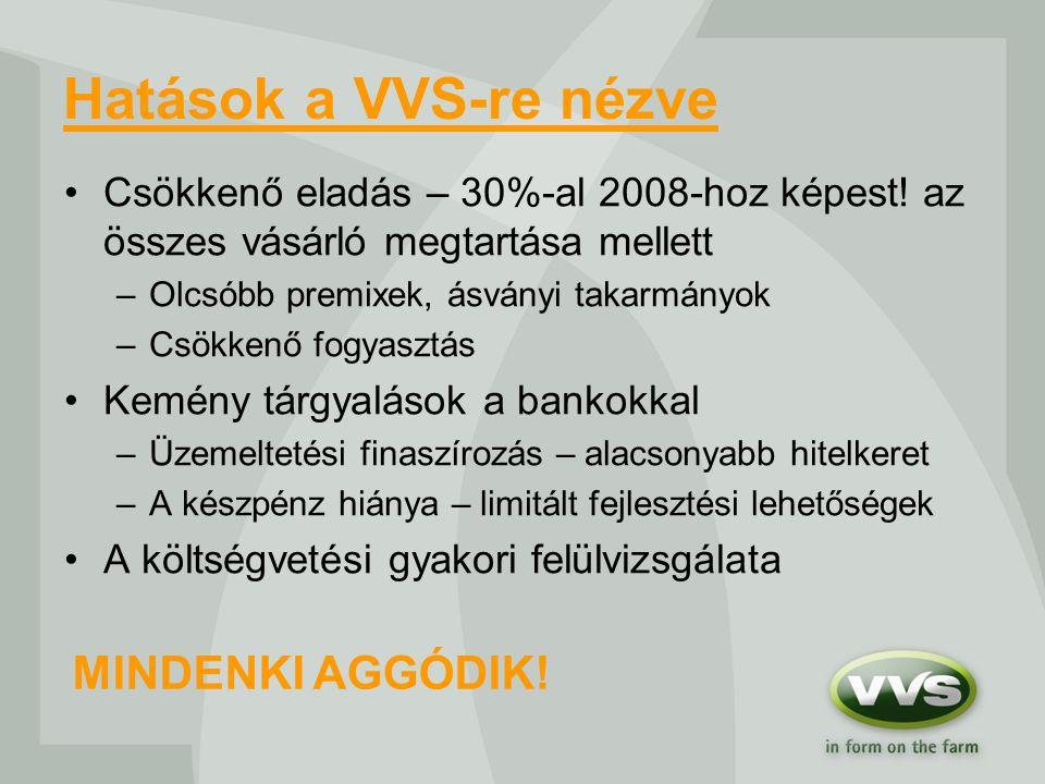 Hatások a VVS-re nézve Csökkenő eladás – 30%-al 2008-hoz képest.