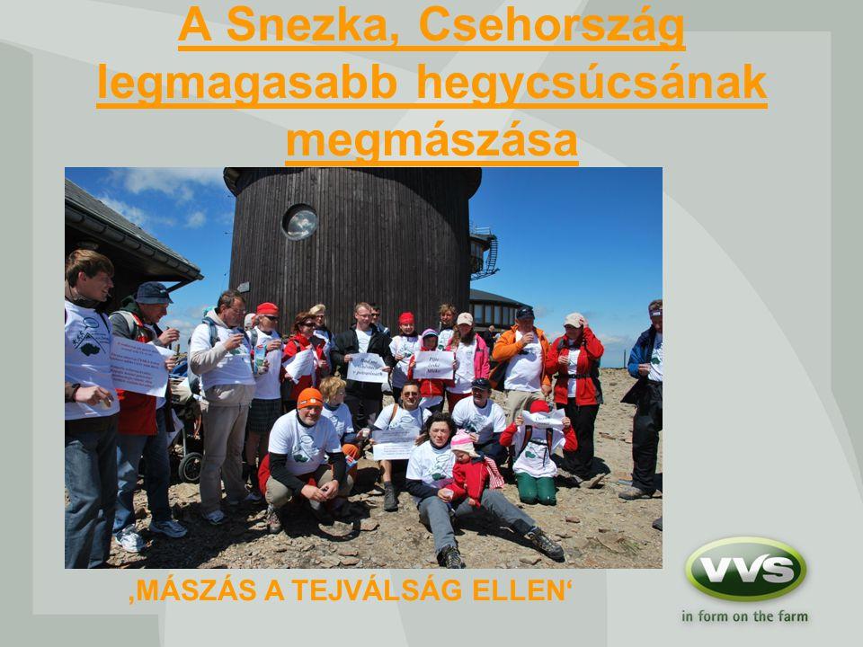 A Snezka, Csehország legmagasabb hegycsúcsának megmászása 'MÁSZÁS A TEJVÁLSÁG ELLEN'