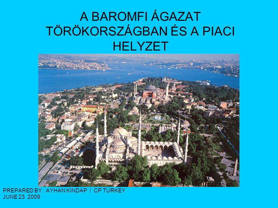 A BAROMFI ÁGAZAT TÖRÖKORSZÁGBAN ÉS A PIACI HELYZET PREPARED BY : AYHAN KINDAP / CP TURKEY JUNE 23 2009