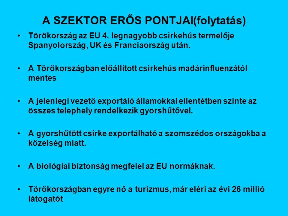 A SZEKTOR ERŐS PONTJAI(folytatás) Törökország az EU 4.
