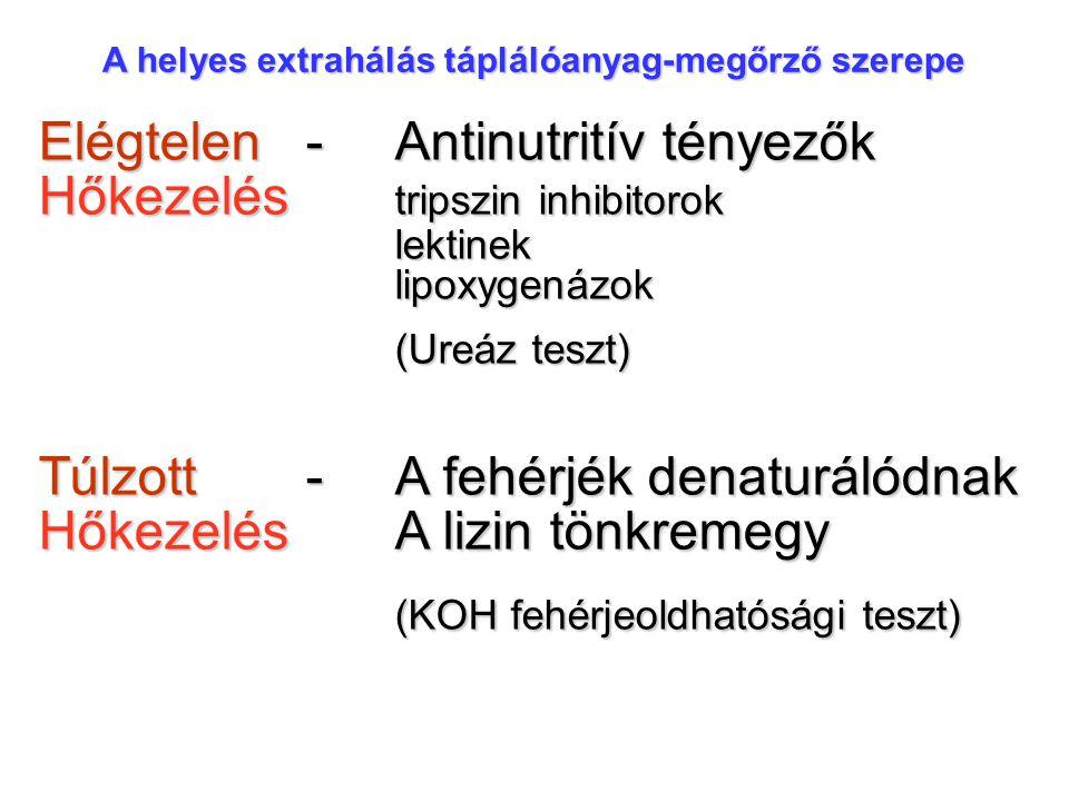 A helyes extrahálás táplálóanyag-megőrző szerepe Elégtelen-Antinutritív tényezők Hőkezelés tripszin inhibitorok lektinek lipoxygenázok (Ureáz teszt) Túlzott-A fehérjék denaturálódnak HőkezelésA lizin tönkremegy (KOH fehérjeoldhatósági teszt)