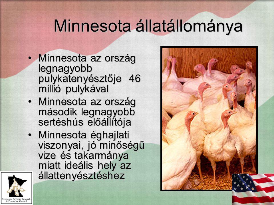 Minnesota állatállománya Minnesota az ország legnagyobb pulykatenyésztője 46 millió pulykávalMinnesota az ország legnagyobb pulykatenyésztője 46 millió pulykával Minnesota az ország második legnagyobb sertéshús előállítójaMinnesota az ország második legnagyobb sertéshús előállítója Minnesota éghajlati viszonyai, jó minőségű vize és takarmánya miatt ideális hely az állattenyésztéshezMinnesota éghajlati viszonyai, jó minőségű vize és takarmánya miatt ideális hely az állattenyésztéshez