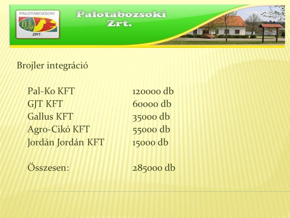 Brojler integráció Pal-Ko KFT 120000 db GJT KFT 60000 db Gallus KFT 35000 db Agro-Cikó KFT 55000 db Jordán Jordán KFT15000 db Összesen:285000 db