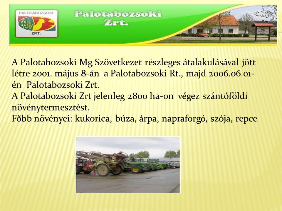 A Palotabozsoki Mg Szövetkezet részleges átalakulásával jött létre 2001. május 8-án a Palotabozsoki Rt., majd 2006.06.01- én Palotabozsoki Zrt. A Palo