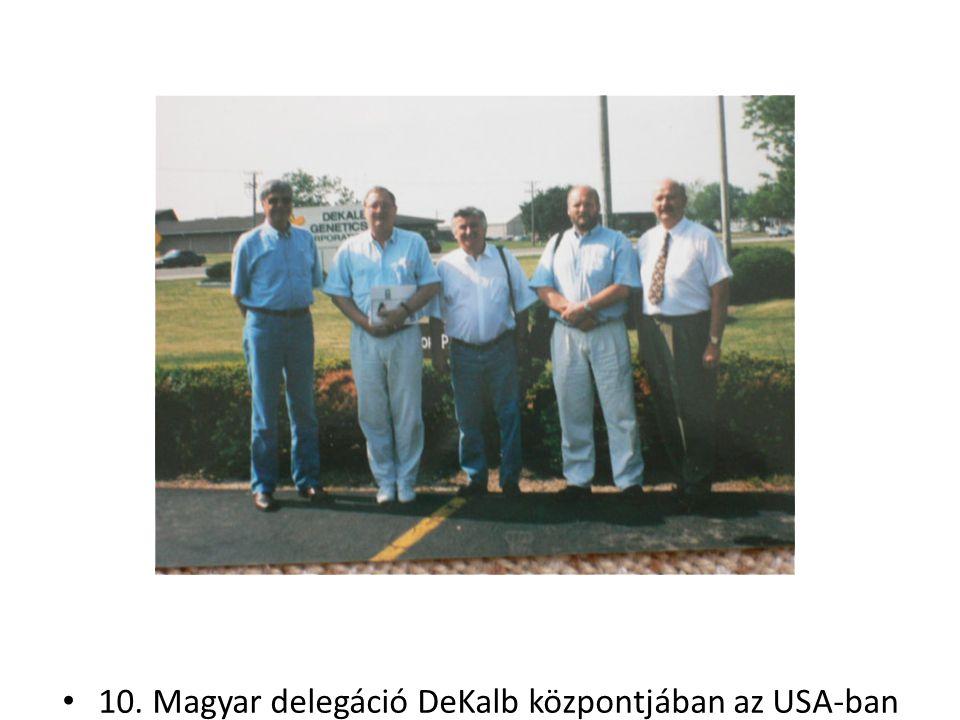 10. Magyar delegáció DeKalb központjában az USA-ban