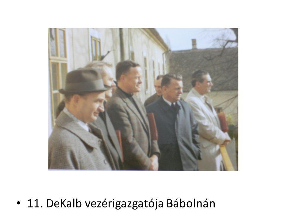 11. DeKalb vezérigazgatója Bábolnán