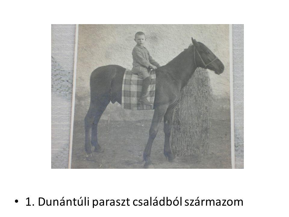 1. Dunántúli paraszt családból származom