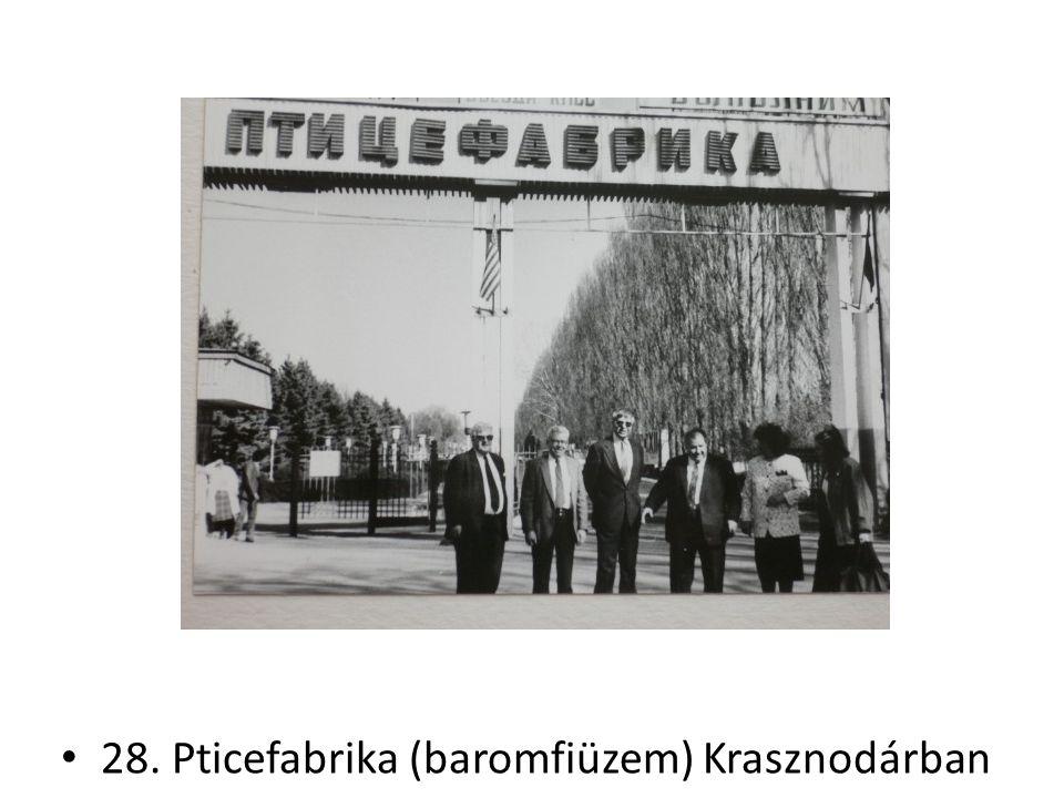 28. Pticefabrika (baromfiüzem) Krasznodárban