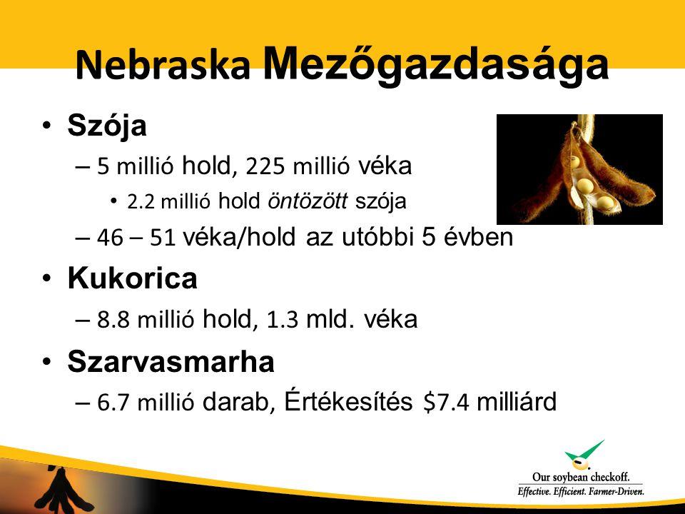 Nebraska Mezőgazdasága Szója – 5 millió hold, 225 millió véka 2.2 millió hold öntözött szója – 46 – 51 véka / hold az utóbbi 5 évben Kukorica – 8.8 millió hold, 1.3 mld.