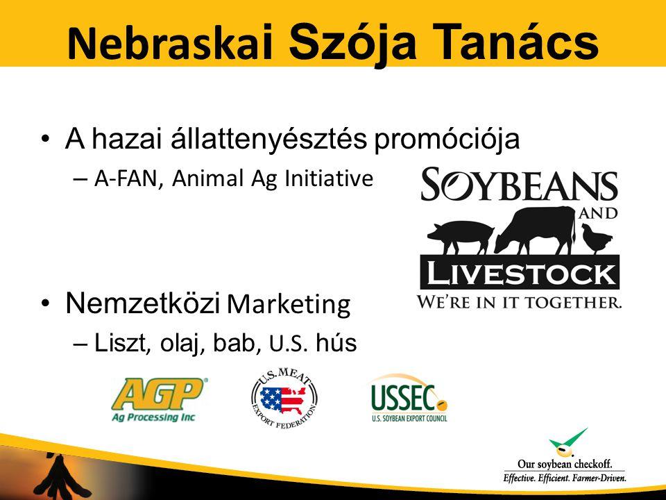 Nebraska i Szója Tanács A hazai állattenyésztés promóciója – A-FAN, Animal Ag Initiative Nemzetközi Marketing –Liszt, olaj, bab, U.S. hús