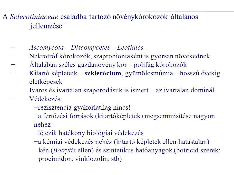 mikotoxintermelőhatása tenuazonsavAlternaria alternataanyagcserezavarok aflatoxinAspergillus flavus, A.