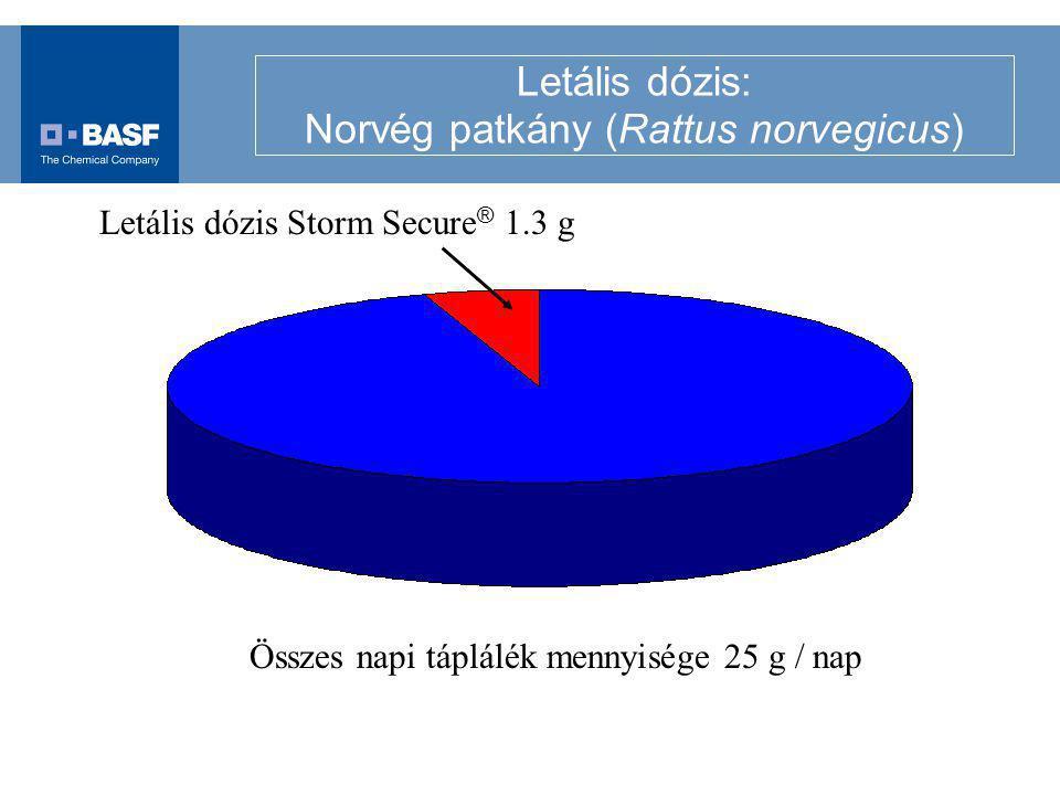 Letális dózis: Norvég patkány (Rattus norvegicus) Összes napi táplálék mennyisége 25 g / nap Letális dózis Storm Secure ® 1.3 g