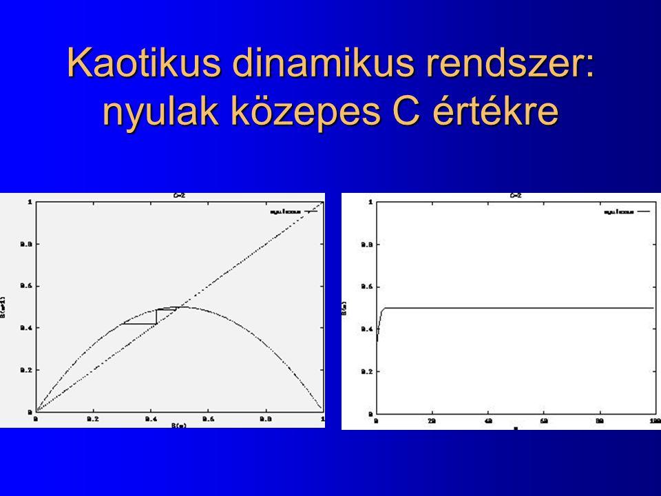 Kaotikus dinamikus rendszer: nyulak közepes C értékre