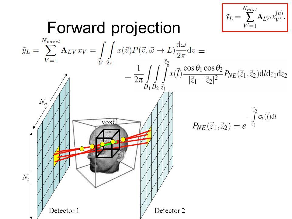 Forward projection Detector 1Detector 2 voxel NtNt NaNa = =