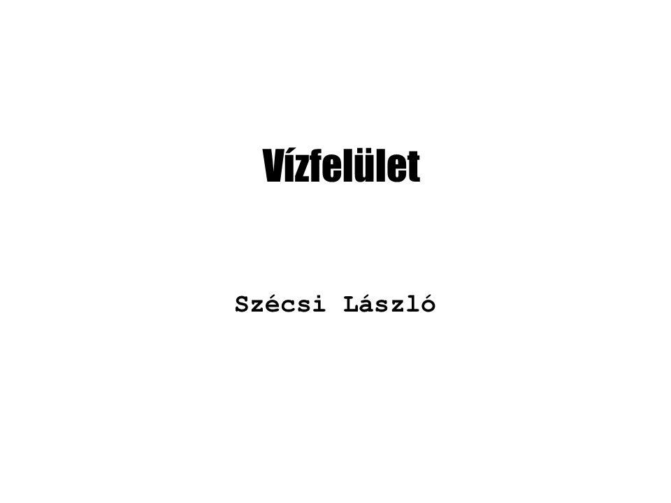 Vízfelület Szécsi László