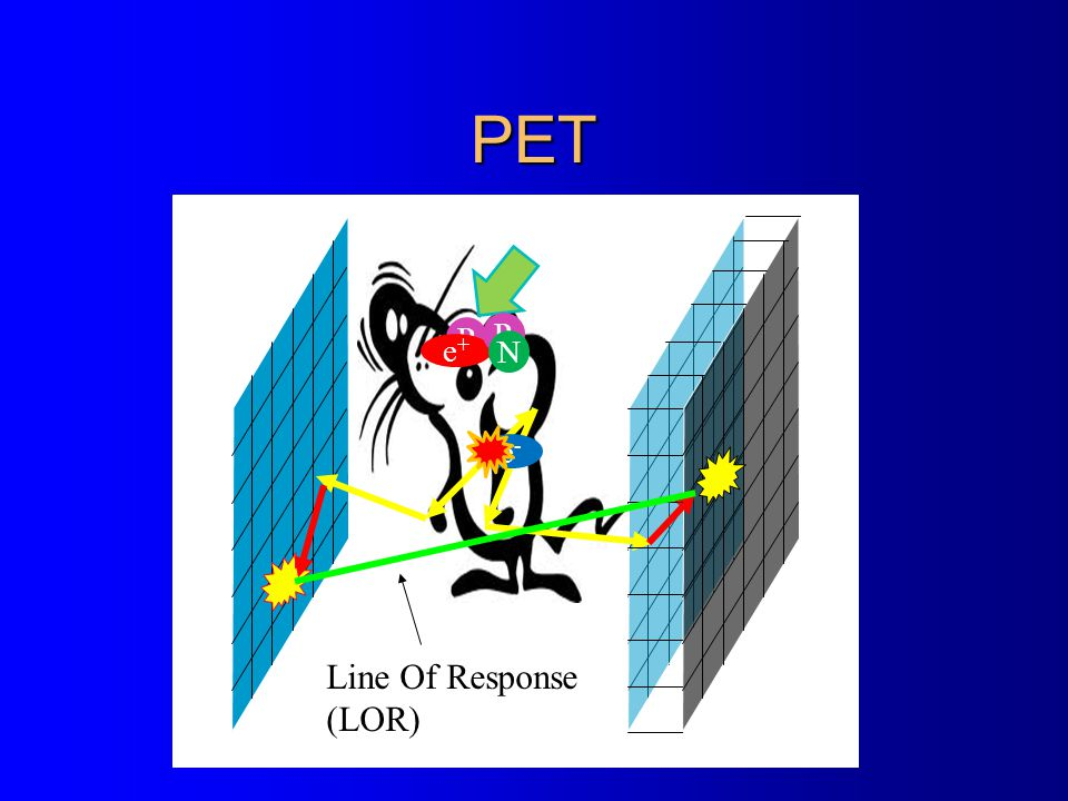 PET Line Of Response (LOR) P e-e- e+e+ P N