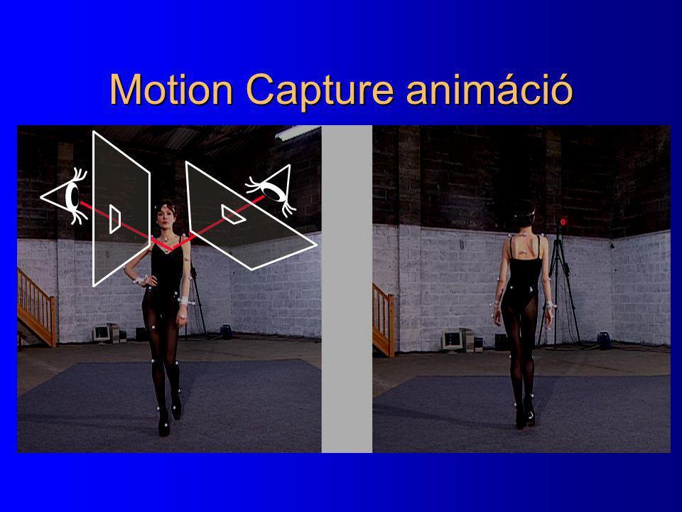 Motion Capture animáció