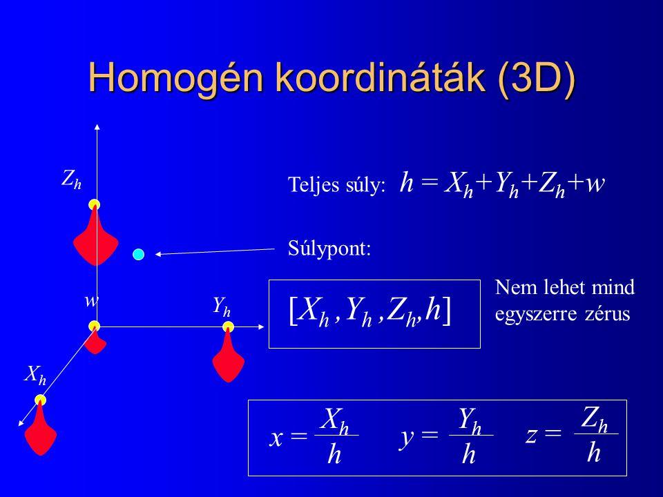 Homogén koordináták (3D) YhYh ZhZh w Teljes súly: h = X h +Y h +Z h +w Súlypont: [X h,Y h,Z h,h] XhXh Nem lehet mind egyszerre zérus x = XhhXhh YhhYhh y = ZhhZhh z =
