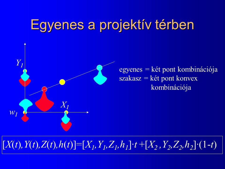 Egyenes a projektív térben X1X1 Y1Y1 w1w1 egyenes = két pont kombinációja szakasz = két pont konvex kombinációja [X(t),Y(t),Z(t),h(t)]=[X 1,Y 1,Z 1,h 1 ]·t +[X 2,Y 2,Z 2,h 2 ]·(1-t)