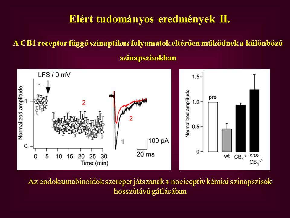 Elért tudományos eredmények II.