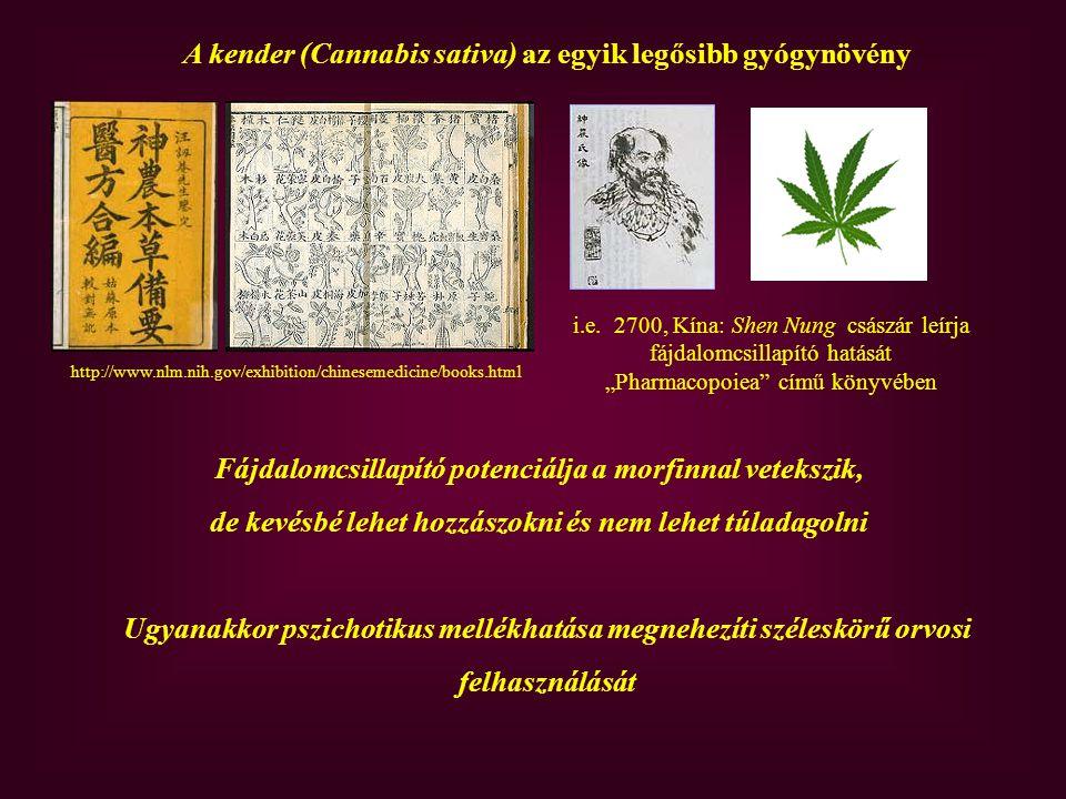 Az endokannabinoid rendszer felfedezése Cannabis sativa, Franz Eugen Köhler s Medizinal-Pflantzen című könyvéből, amely1887-ben jelent meg.