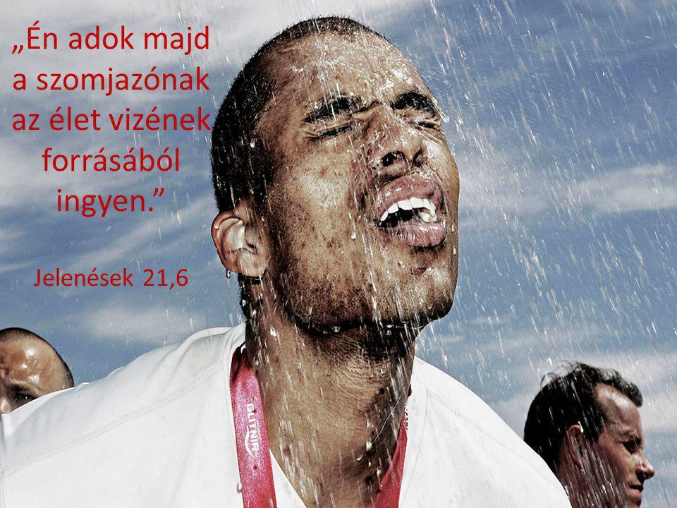 """""""Én adok majd a szomjazónak az élet vizének forrásából ingyen."""" Jelenések 21,6"""