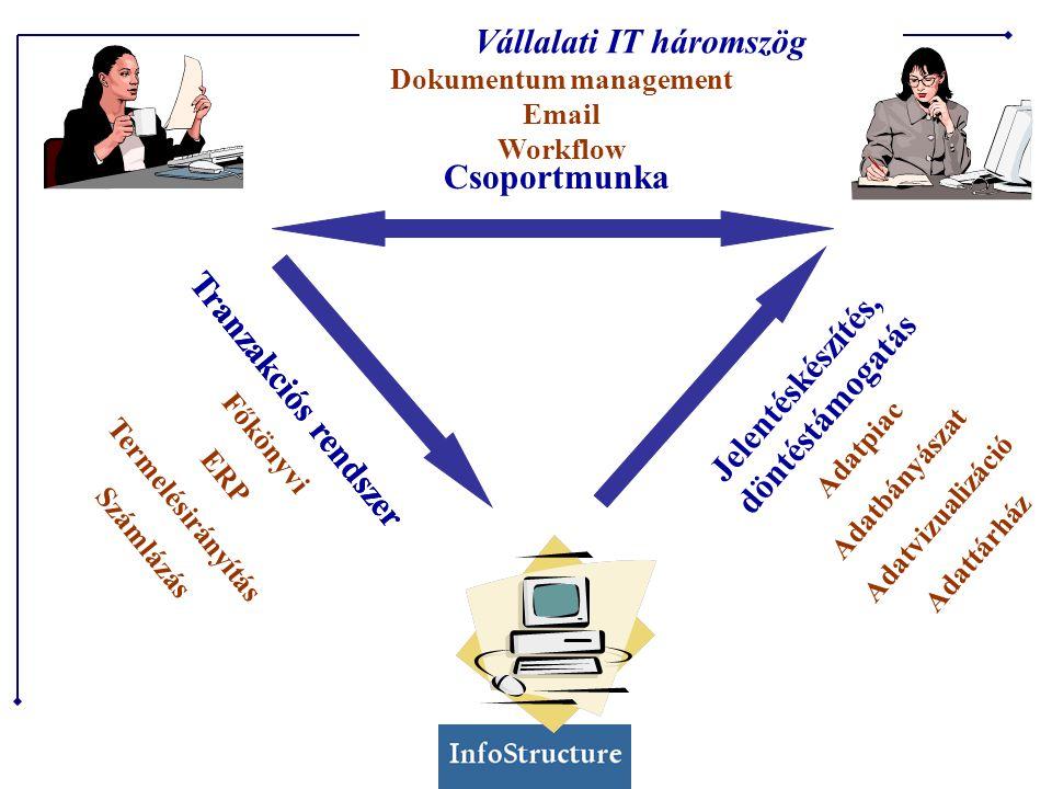 Főkönyvi ERP Termelésiszámítás Számlázás Adatpiac Adatbányászat Adatvizualizáció Adattárház Dokumentum management Email Workflow Csoportmunka Tranzakciós rendszer Jelentéskészítés, döntéstámogatás